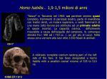 homo habilis 1 9 1 5 milioni di anni