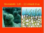 stromatoliti 3 85 3 5 miliardi di aa
