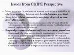 issues from c ipe perspective
