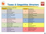 teams competitive structure