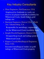 key industry consultants