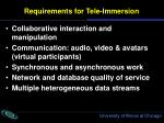 requirements for tele immersion