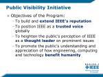 public visibility initiative1