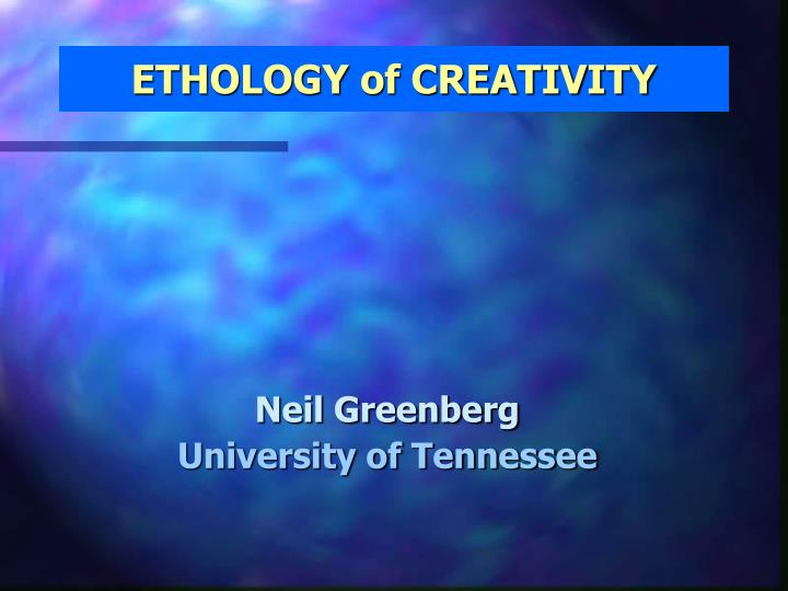 ethology of creativity n.
