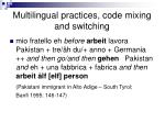 multilingual practices code mixing and switching