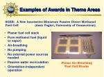examples of awards in theme areas1