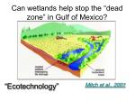 can wetlands help stop the dead zone in gulf of mexico