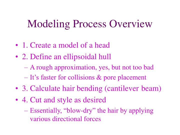 Modeling Process Overview