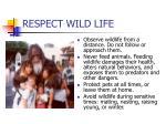 respect wild life