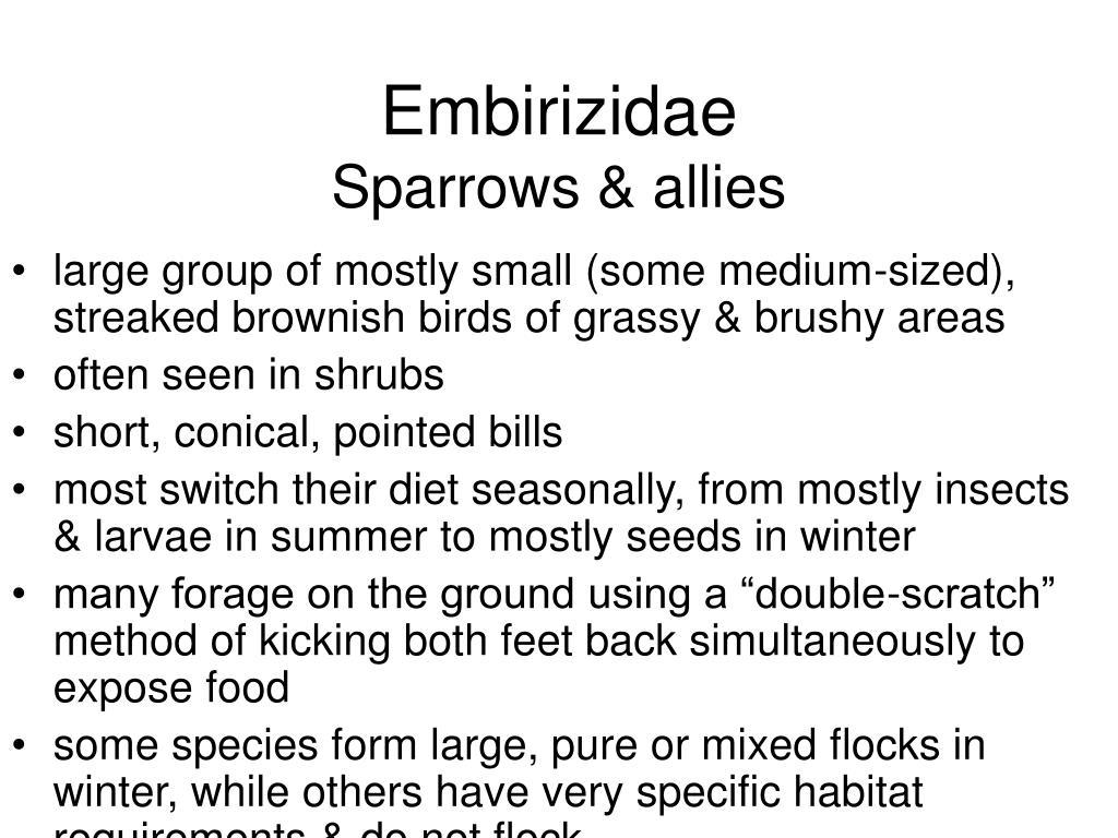 Embirizidae