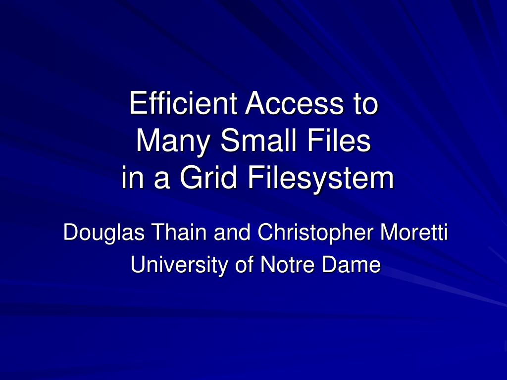 efficient access to many small files in a grid filesystem l.