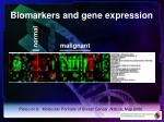 biomarkers and gene expression