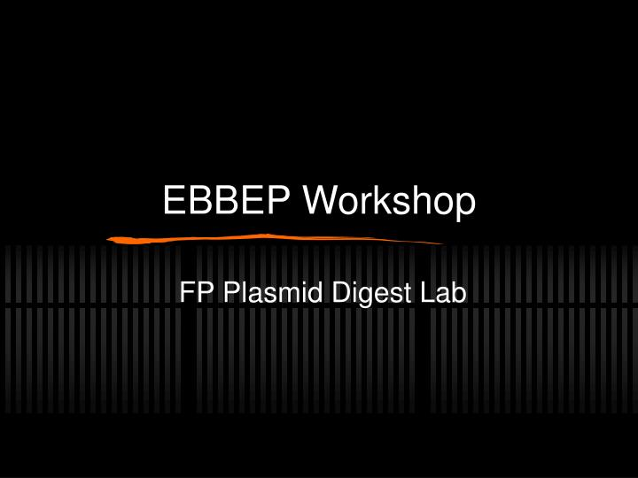 ebbep workshop n.