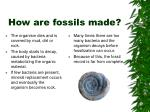 how are fossils made
