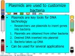 plasmids are used to customize bacteria