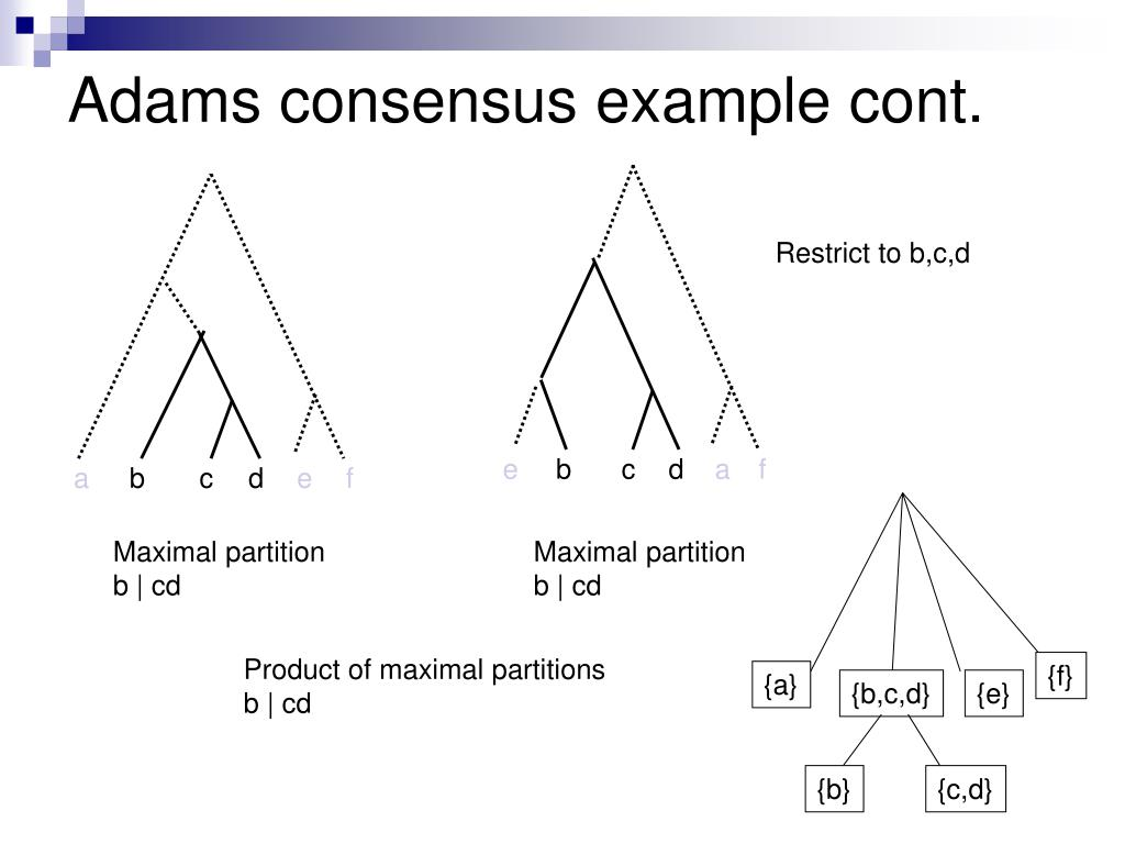 Adams consensus example cont.