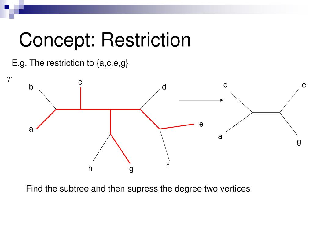 Concept: Restriction