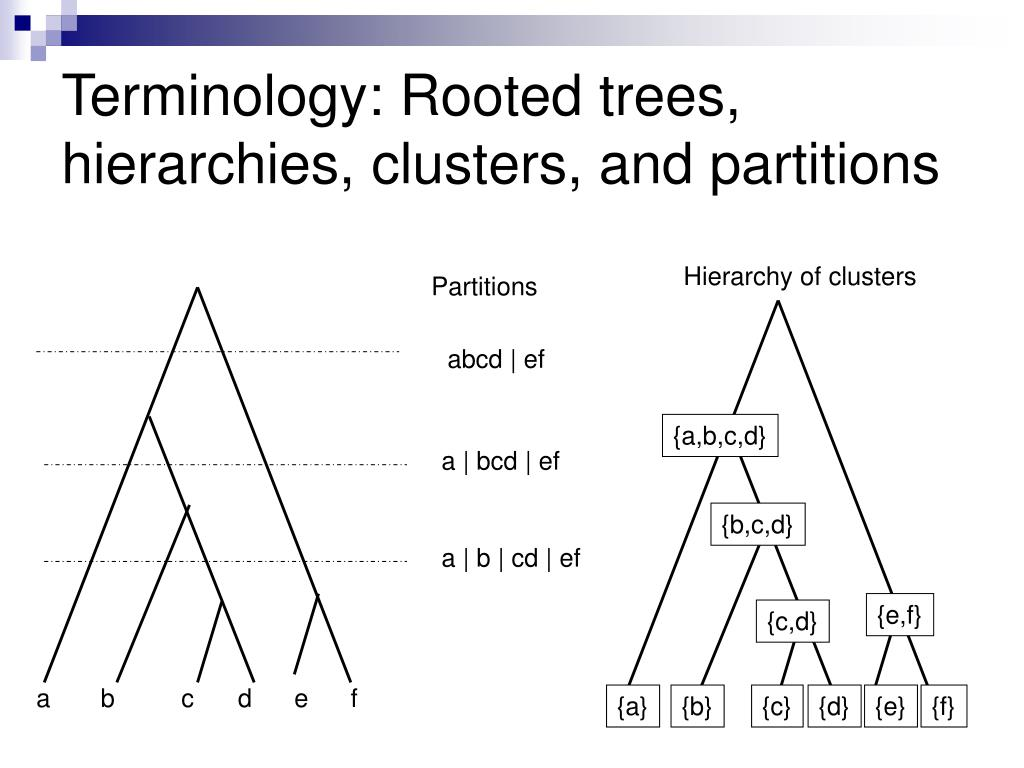 Terminology: Rooted trees, hierarchies, clusters, and partitions