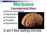 marijuana cannabinoid sites