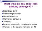 what s the big deal about kids drinking anyways