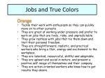 jobs and true colors1