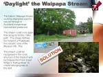 daylight the waipapa stream