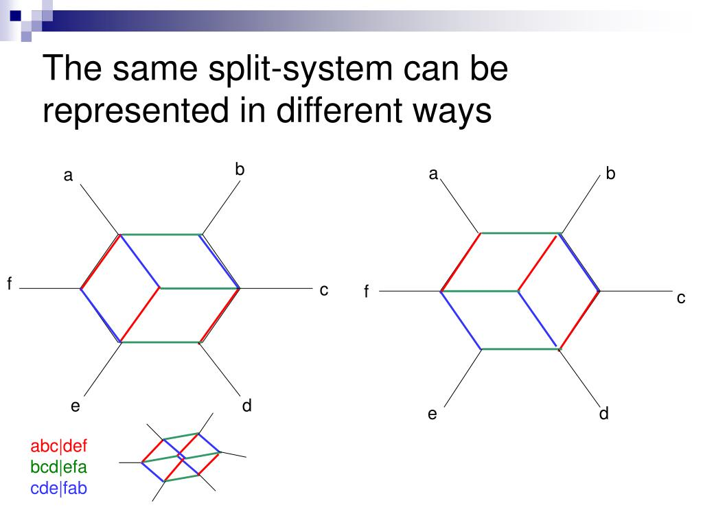 The same split-system can be represented in different ways