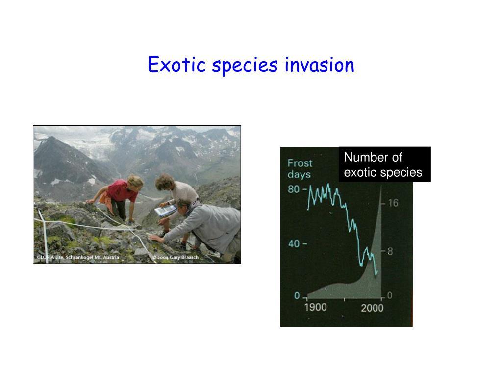Exotic species invasion