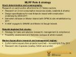 mlrf role strategy