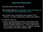 teaching chimpanzees22