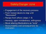 safety danger zone