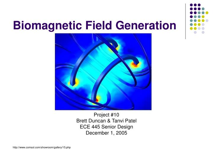 biomagnetic field generation n.