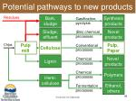 potential pathways to new products
