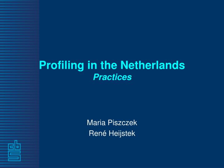 profiling in the netherlands practices n.