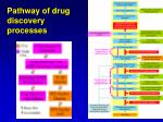 pathway of drug discovery processes