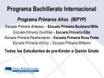programa bachillerato internacional