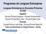 programas de lenguas extranjeras
