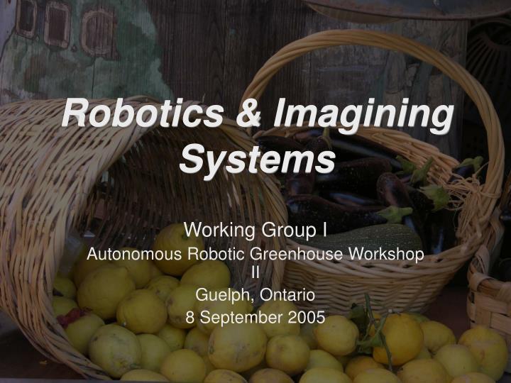 robotics imagining systems n.