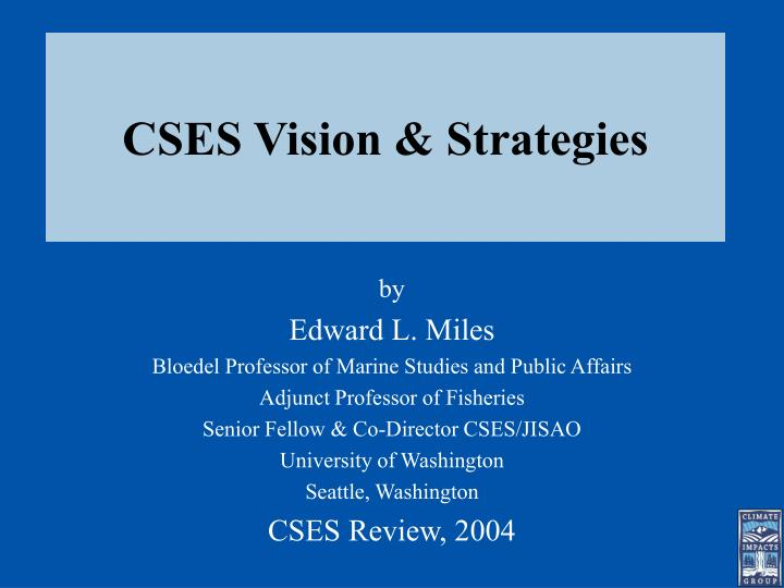 cses vision strategies n.