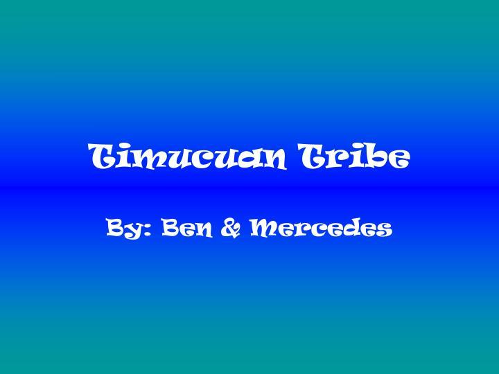 timucuan tribe n.