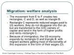 migration welfare analysis1