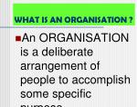 what is an organisation