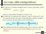 gini index ibm intelligentminer