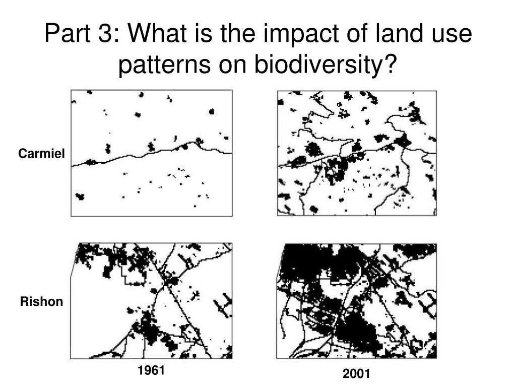 Part 3: What is the impact of land use patterns on biodiversity?