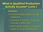 what is qualified production activity income cont3