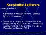 knowledge spillovers
