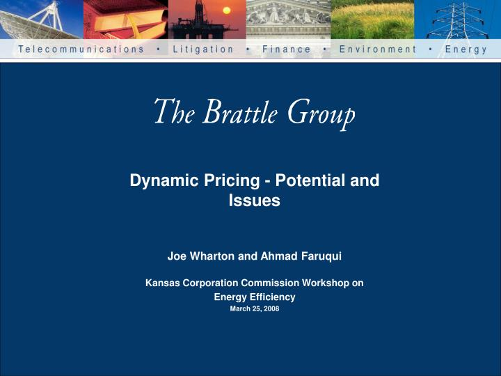 dynamic pricing potential and issues n.