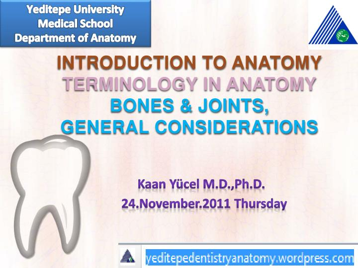 Ppt Introduction To Anatomy Terminology In Anatomy Bones Amp