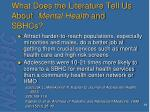 what does the literature tell us about mental health and sbhcs