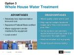 option 3 whole house water treatment1